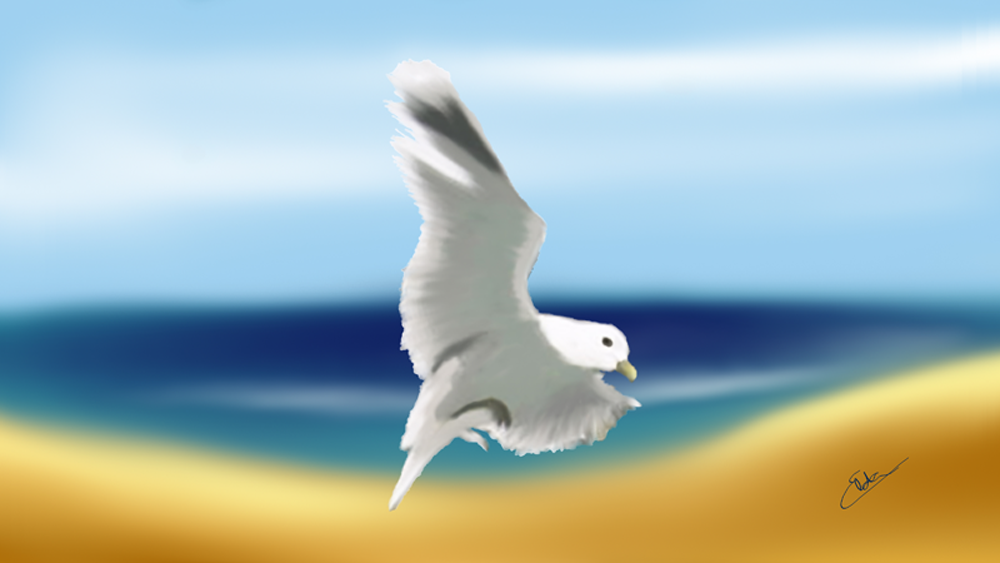 Viver em paz… espírito a navegar