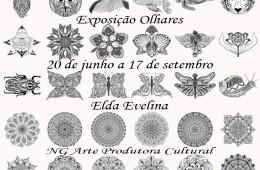 Olhares – Exposição na NGArte Produtora Cultural