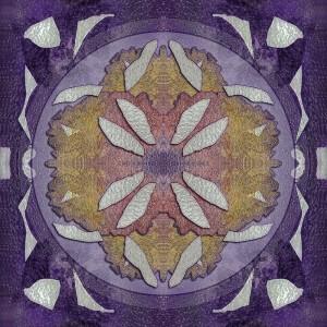 Transmutação I