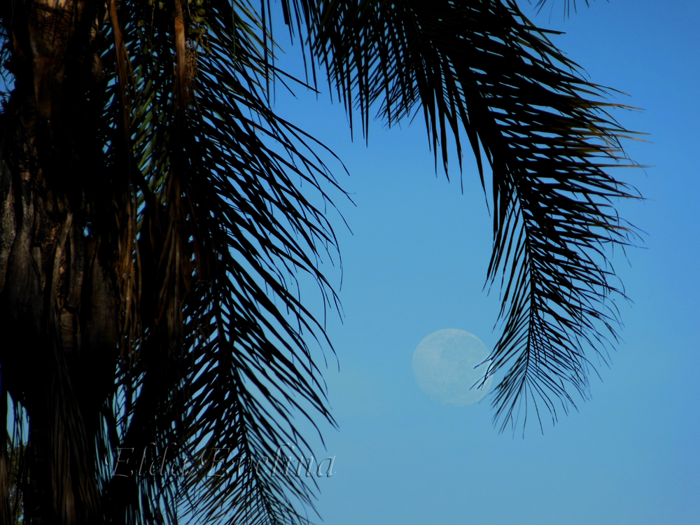 Lua – um olhar poético