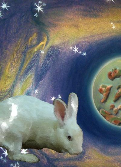 Flofi, o coelho inteligente