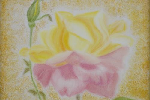 Nasce uma flor