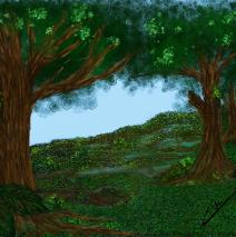 Canto um canto para as florestas do meu País – Floresta encantada
