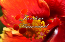 Jardim Amorável